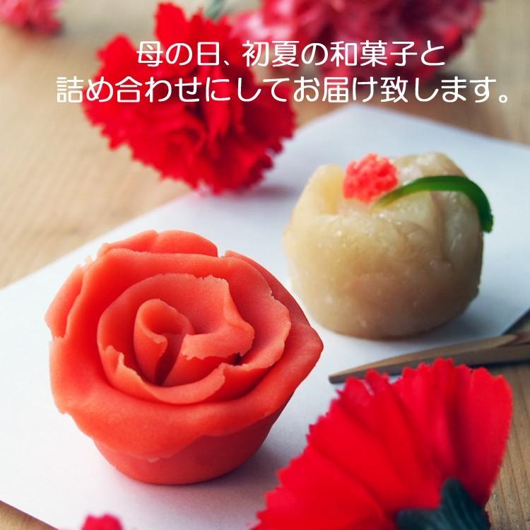 母の日和菓子菓子 練切製 カーネーション 2018@磯子風月堂_e0092594_21532426.jpg