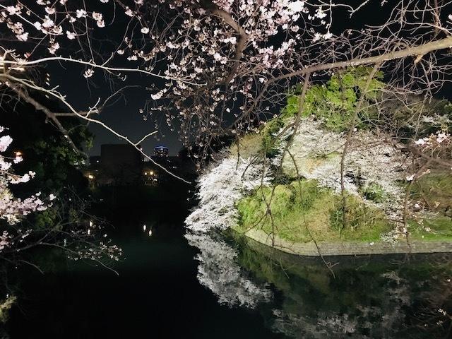 2018年の桜(1)_b0129897_13232180.jpg