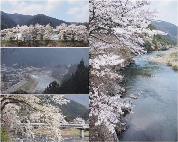 桜も終わり、荷物も届いて_d0252505_09305839.jpeg