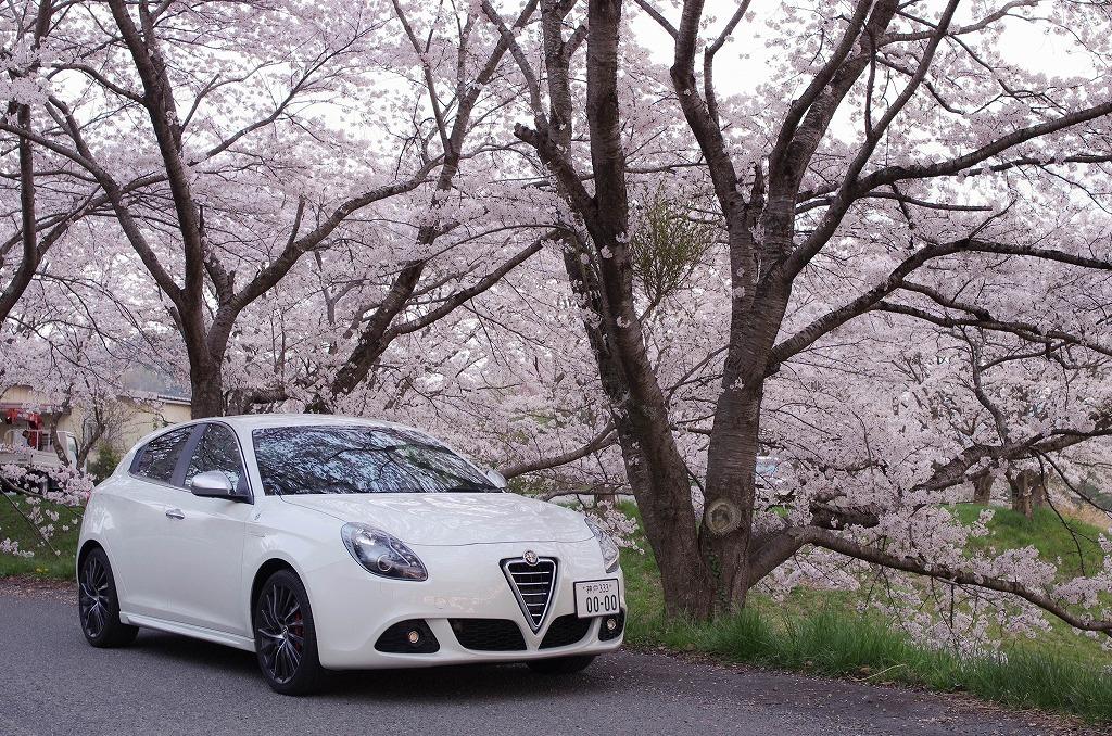 Alfa Romeo Giulietta_c0106831_23105621.jpg