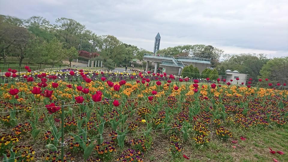 土曜日は東山動植物園へ!_f0373339_14323450.jpg