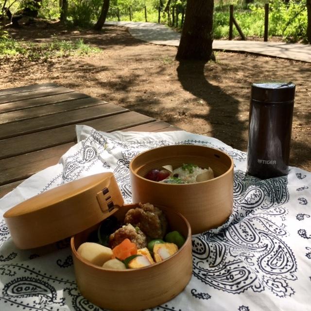 picnic  眩しい緑と春の花々に癒されて_a0165160_21173713.jpg