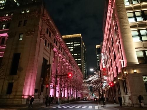 日本橋の桜♪_c0100865_20425862.jpg