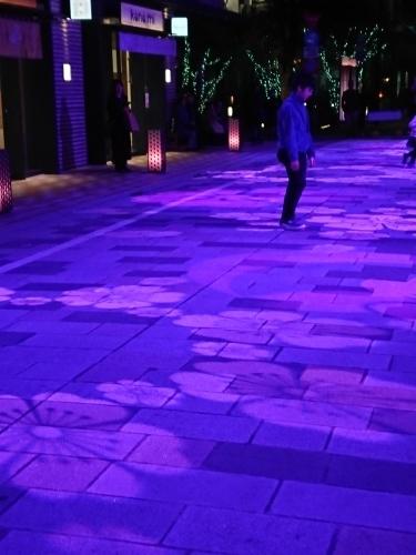 日本橋の桜♪_c0100865_20562210.jpg