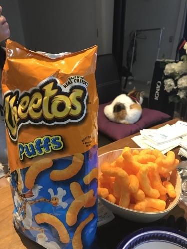 Love, Cheetos._c0153966_21564208.jpeg