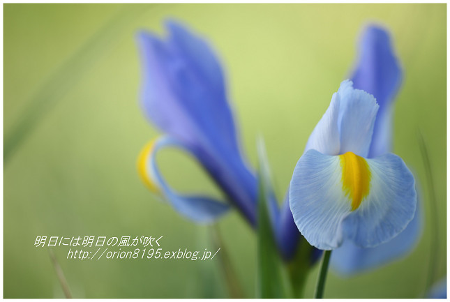 f0361079_09364815.jpg