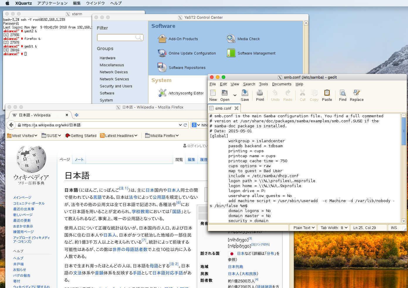 Mac からSUSE Linux のX アプリケーションを使う_a0056607_14292876.jpg