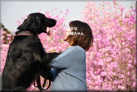 f0363141_20072178.jpg