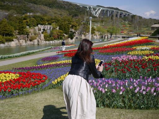 淡路島 国営明石海峡公園のチューリップ!_e0359436_08592340.jpg