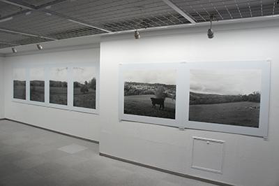 「ある牛の旅 Hiro TOBE写真展」開催中です!_f0171840_14321072.jpg