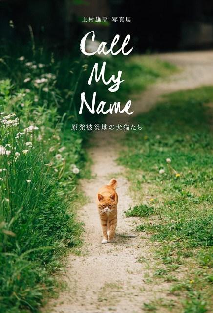 『Call my name 原発被災地の犬猫たち』_c0125114_16331832.jpg