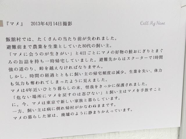 『Call my name 原発被災地の犬猫たち』_c0125114_16461477.jpg