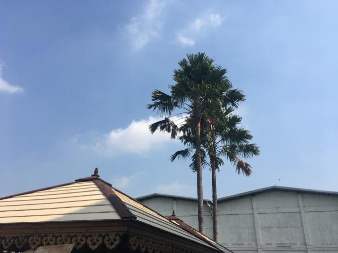 ソンクランがタイ国のお正月_b0100062_09421093.jpg