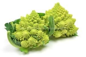 ダイエットに最適な 野菜! ロマネスコ_b0179402_01404445.jpg