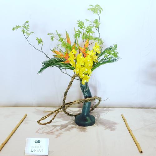 平安神宮 献花展(大会) 2018年 4月14~16日_b0248803_12354259.jpg