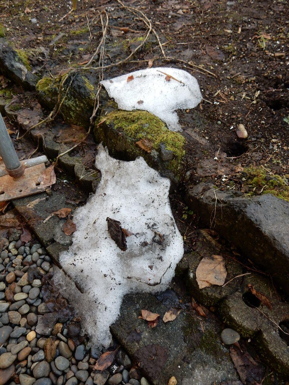 残雪最終日_c0025115_22192507.jpg