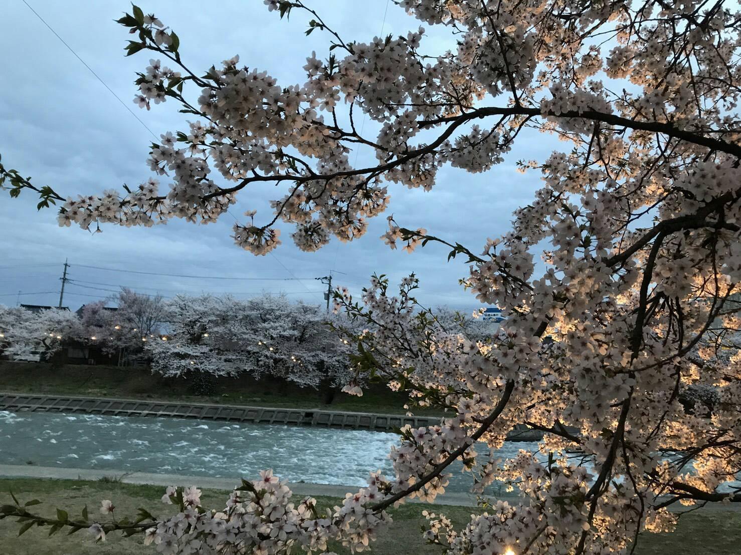 小坂八幡社 遷座祭(神様の引っ越し)_b0062748_10581921.jpg