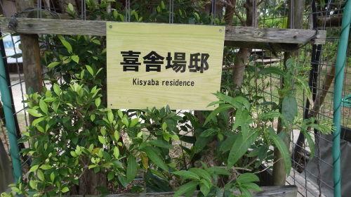 石垣島観光  石垣やいま村、リスザルの森、唐人墓、_c0011649_12292921.jpg