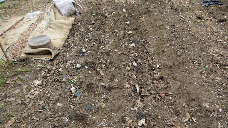トマト、ナス、ピーマンの苗など4日連続植え付け4・9~12_c0014967_21340603.jpg