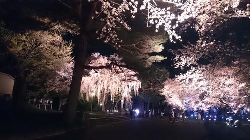 新潟にて_e0040673_12122072.jpg