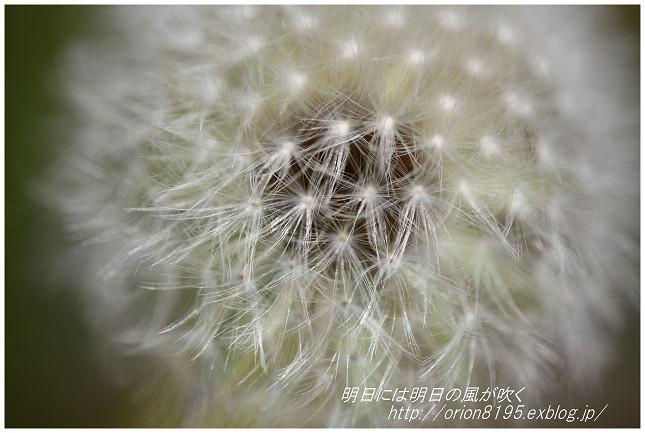 f0361079_19081472.jpg