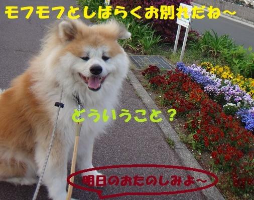 f0121712_00140061.jpg