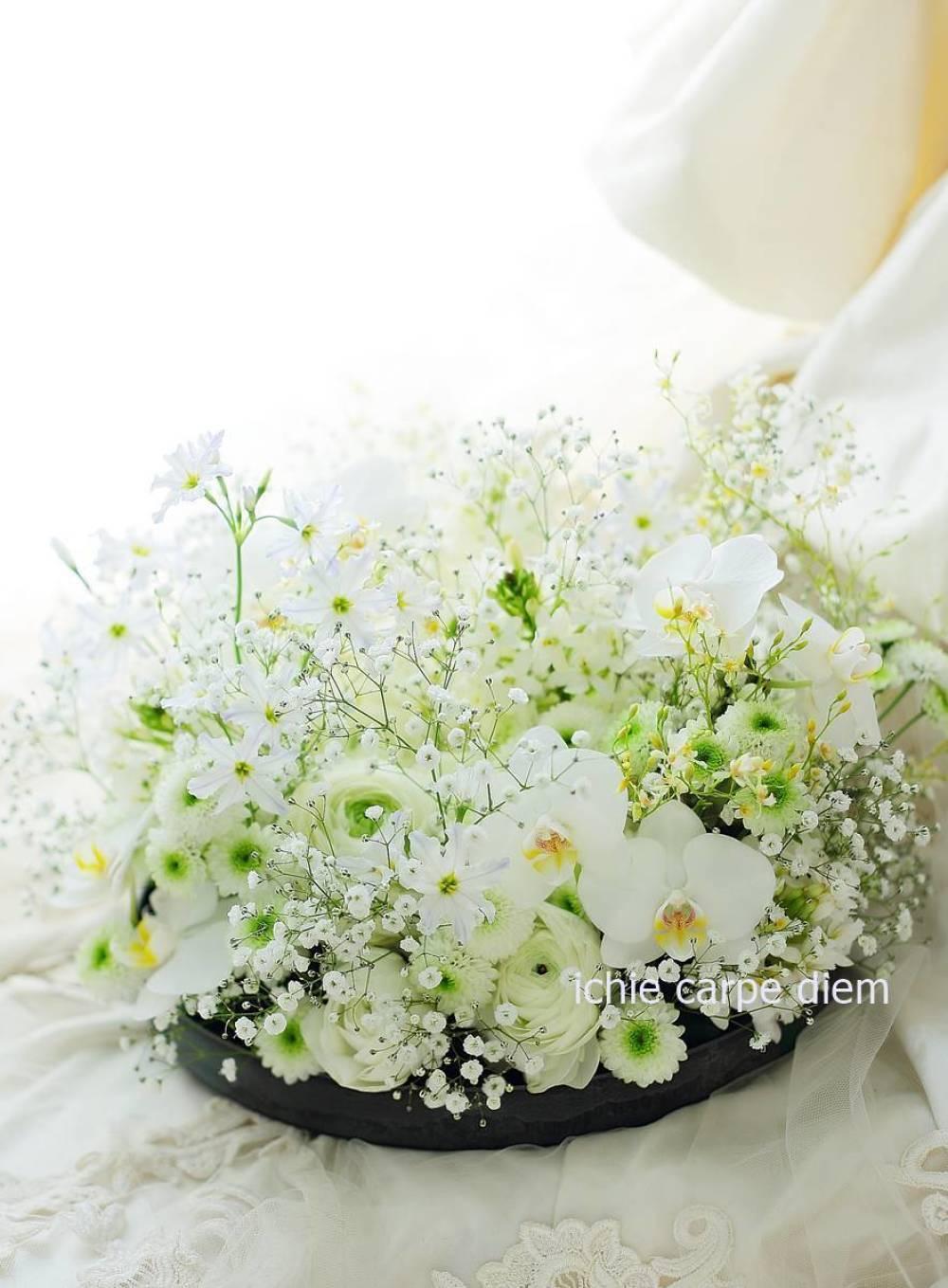花のギフト お供えのお花として 胡蝶蘭とカスミソウのアレンジ_a0042928_13111719.jpg