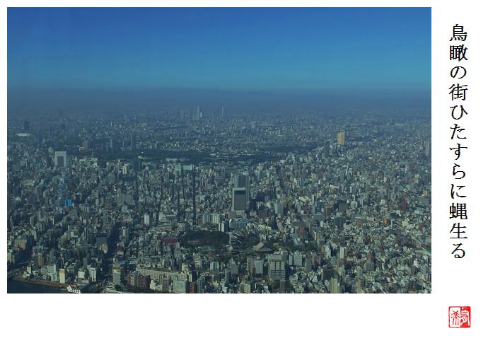 鳥瞰の街ひたすらに蝿生る_a0248481_21165545.jpg
