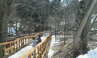 円山動物園へ_f0078286_10005034.jpg