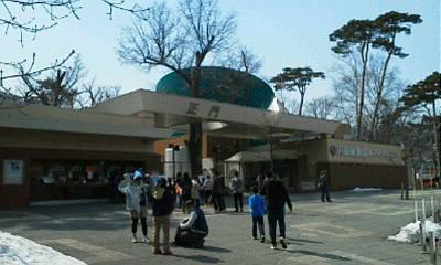 円山動物園へ_f0078286_10012878.jpg