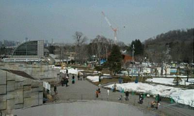 円山動物園へ_f0078286_10023815.jpg