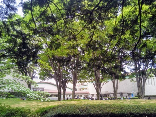 さくら祭り@世田谷美術館を訪ねて_a0057402_20431399.jpg