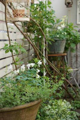 まほうのおーぶんの garden_f0225639_20075394.jpg