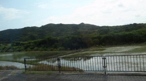 西表島(いりおもて)観光  仲間川マングローブ・遊覧クルーズ_c0011649_23223955.jpg