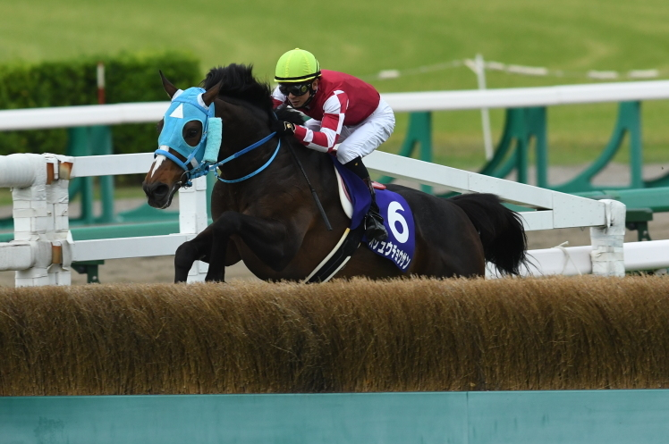 4/14 THE NAKAYAMA GRAND JUMP(J.G1) - MY FRIEND・MY THOROUGHBRED