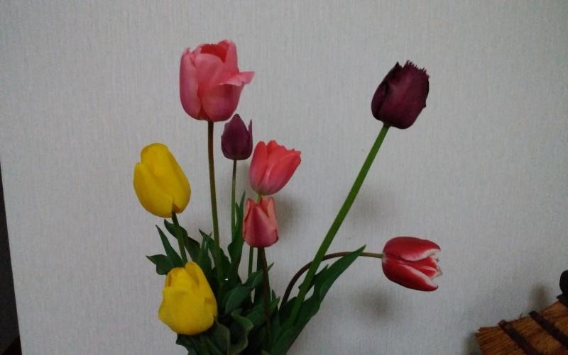 f0153475_18092407.jpg