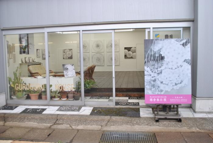 藤倉春日展 「花色の時」_c0267580_16220323.jpg