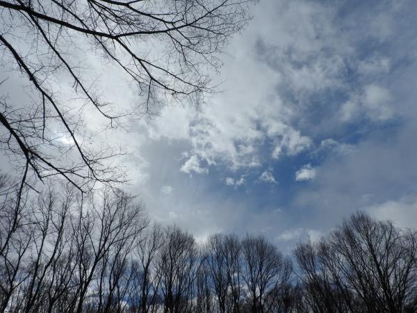4月中旬からゴールデンウィークまで:気候と服装まとめ(2018年4月16日)_b0174425_19110613.jpg