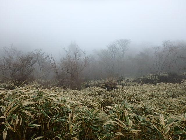 小雨 霧の六甲 おじさんの休日_f0334143_7215337.jpg