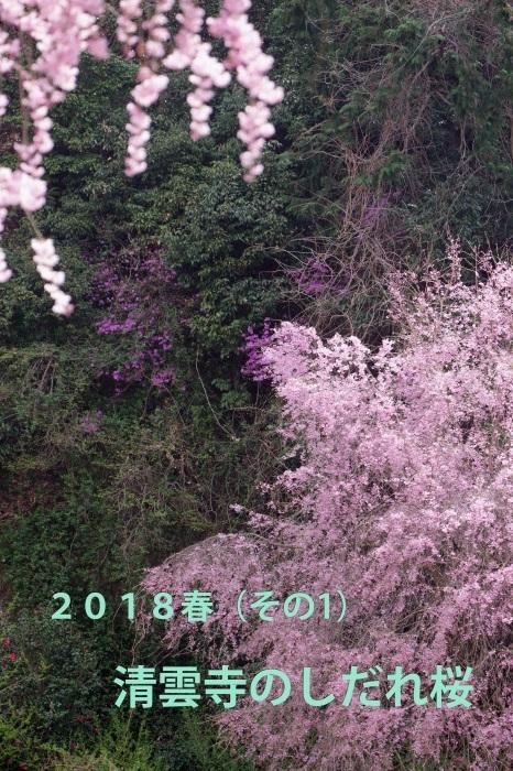 b0144049_13344105.jpg