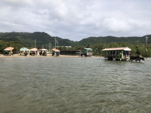 由布島観光 水牛車で海を渡る_c0011649_05145652.jpg