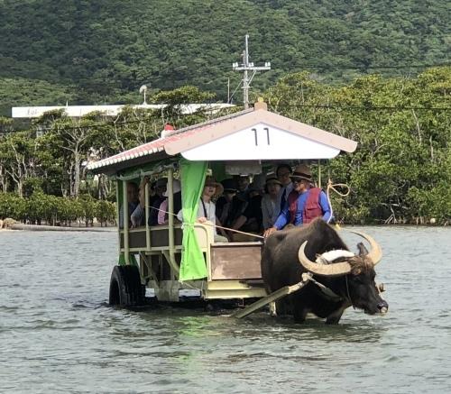 由布島観光 水牛車で海を渡る_c0011649_05154277.jpg