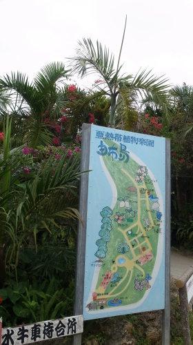 由布島観光  蝶々園と亜熱帯植物園_c0011649_23104908.jpg