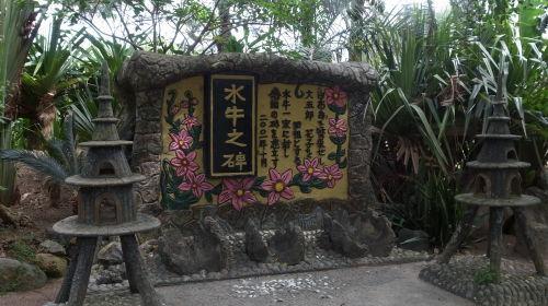 由布島観光  蝶々園と亜熱帯植物園_c0011649_23160482.jpg