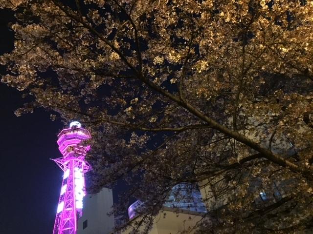 【日本ー】あべのハルカスへ行ってきた~!        大阪_e0184067_17314348.jpg