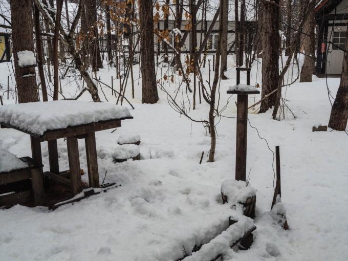 4月中旬ですが・・2夜連続積雪で畑はすっかり雪景色。_f0276498_22393457.jpg