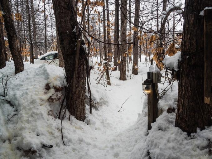 4月中旬ですが・・2夜連続積雪で畑はすっかり雪景色。_f0276498_22403274.jpg
