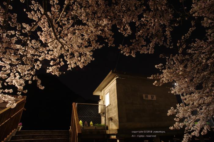 静けさの戻った桜の駅で_d0309612_22255508.jpg