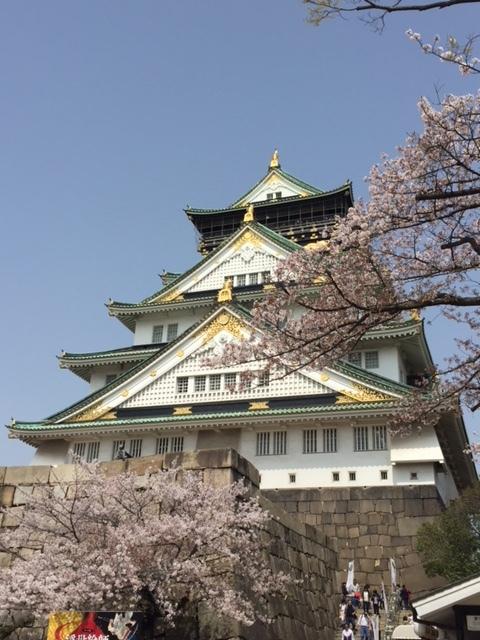 大阪城公園は桜満開!               大阪_e0184067_15224567.jpg