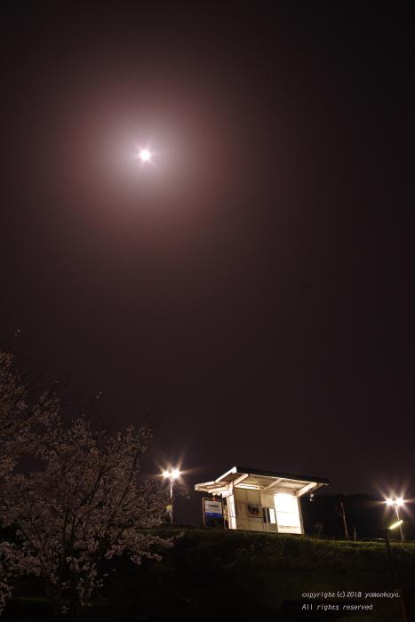 満月を見上げて_d0309612_22060062.jpg